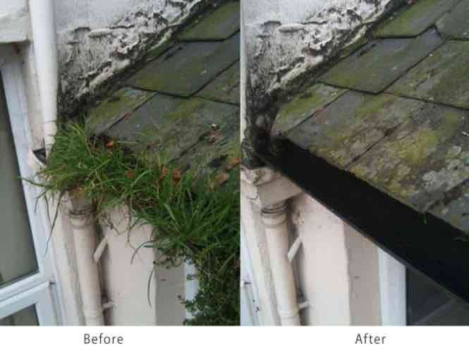 before / after gutter cleaning